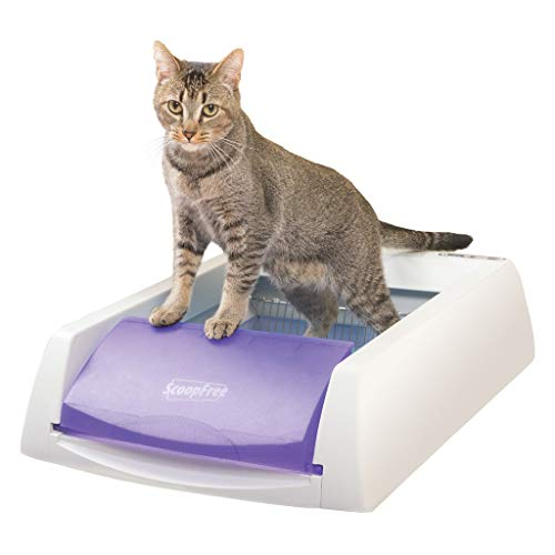 PetSafe ScoopFree Automatic Self Cleaning Cat Litter Box, Includes Disposable Trays with Crystal Litter