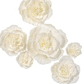 Ling s moment Paper Flower Decorations Set of 9 8  -4   Assorted  Handcrafted Artificial Crepe Paper Peony for Wall Nursery Wedding Backdrop Bridal Shower Centerpiece Monogram 15th Birthday