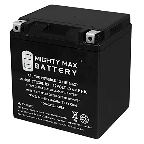 Mighty Max Battery YTX30L-BS 12V 30AH Battery for Polaris Ranger Brand Product