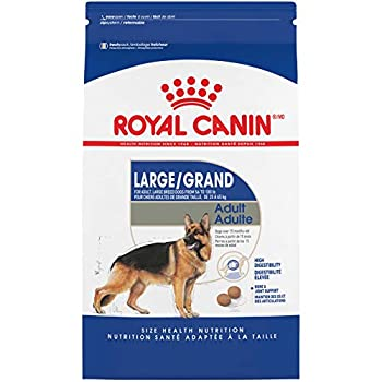 Royal Canin Large Breed Adult Dry Dog Food 35 pounds Bag