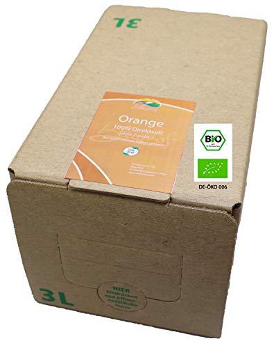 Bleichhof Bio-Orangensaft- 100% Direktsaft ohne Zusätze, Bag-in-Box Verpackung mit Zapfsystem (1x 3l Saftbox)