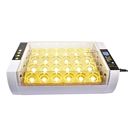 iBoosila Brutmaschine Vollautomatisch Inkubator 24 Eier Brutautomat, Vollautomatisch Brutapparat Brutkasten für Hühner, Bruteier Hatcher mit LED (Brutmaschine 2020)