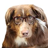 G004 80s Dorky Clear lens Dog Glasses for Costume & Photoshoot (For all Medium to large dogs 20lbs & over) (Brown-clear, clear)