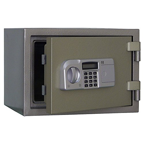 Steelwater AMSWEL-310 Fireproof Home and Document Safe