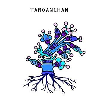 Tamoanchan