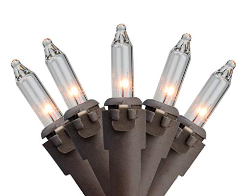 Northlight 35-Count Clear Mini Christmas Lights Set, 7ft Brown Wire