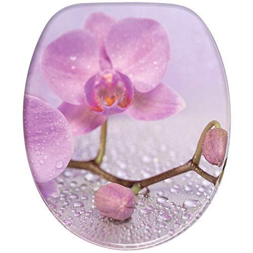 WC Sitz, viele schöne WC Sitze zur Auswahl, hochwertige und stabile Qualität aus Holz (Blooming)