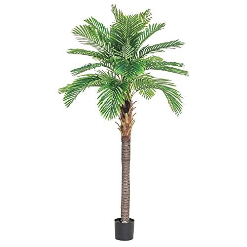 Planta Artificial Decorativa para Jardin Garden - LOLAhome (Palmera datilera 220cm)