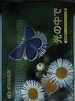光の中で―蝶と草花の風景 (京都書院アーツコレクション―A souvenir postcard book (121))