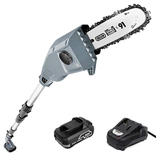 SALEM MASTER 20V Max 8-Inch Cordless-Pole-Saw for Tree Trimming, Electric Telescopic Pole Chain Saw Up To 12 FT, Battery Powered Tree Trimmer