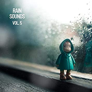 Rain Sounds Vol. 5, The Rain Library