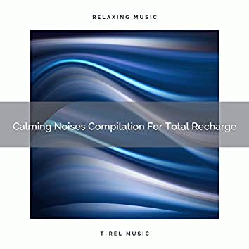 Calming Noises Compilation For Total Recharge