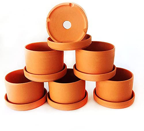 Natural Terracotta Round Fat Walled Garden Planters with Individual Trays. Set of 6
