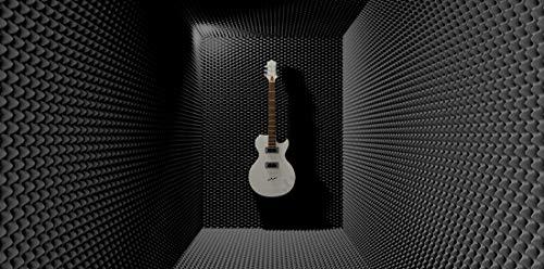 SCHAUMEX ® Noppenschaumstoff 50x30x5cm - Akustik Schaumstoff, Akustikschaumstoff, Dämmung für Tonstudio, Youtube room, In Deutschland hergestellt - 7