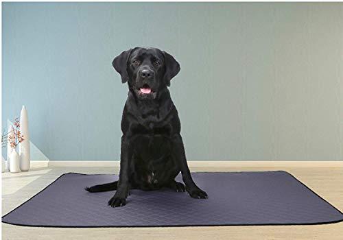 Nifogo Toallitas de Entrenamiento para Mascotas,Empapadores de adiestramiento para Perros,para Atraer los Cachorros y Simplificar el Entrenamiento,Ultraabsorbente (2PCS, 140 * 100cm)