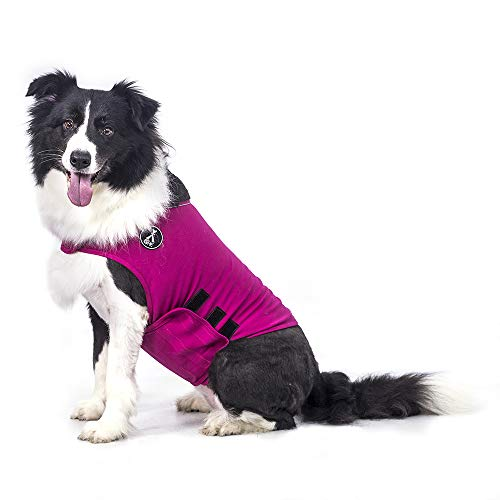 @HE Dog Anxiety Relief Coat