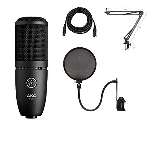 AKG Acoustics Project Studio P120 Medium Diaphragm Cardioid Condenser Microphone, Black - Bundle with Technical ARM1 Mic Crane Arm, Nady SPF-1 Mic Pop Filter, 25' XLR M to XLR F Mic Cable