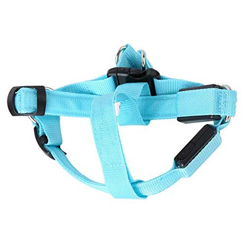 YIE Pet Perro LED Collar LUZ Mostrar LUZ DE Seguridad DE Seguridad DE Seguridad DE LA Cuerda ADJUSTIBLE Tabla (L)