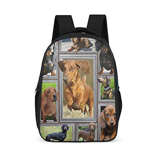Cyliyuanye Dachshund Durable Kids' Backpack School Book Bag For kids Adults Gift For Boys Girls bright gray onesize