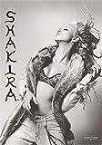 Heart Rock Flagge Original Shakira B-W, Stoff, Mehrfarbig,