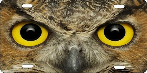 Lawenp License Plate Covers Owl Eyes Customized Aluminum Metal, Decorative Auto Car Front License Plates, Vanity Car Tag 6' X 12'