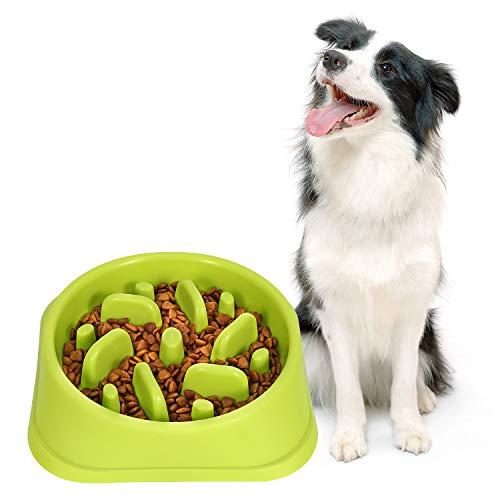 Slow Feeder Dog Bowl Non Slip Non Toxic Fun Healthy No Chocking Dog Food Water Bowl for Large Medium Small Dogs