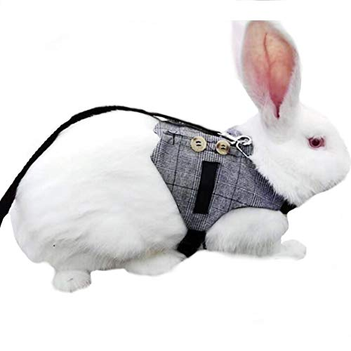 Stock Show Cute Vintage Bunny Vest Harness and Leash Set with Button Decor Small Pets Adjustable...