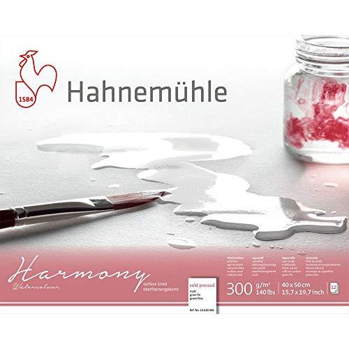 Hahnemuhle Harmony bloc de acuarela, 12 hojas, 40 x 50 cm, grano fino