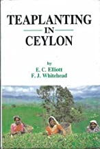 Tea Planting in Ceylon