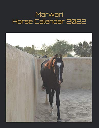 Marwari Horse Calendar 2022