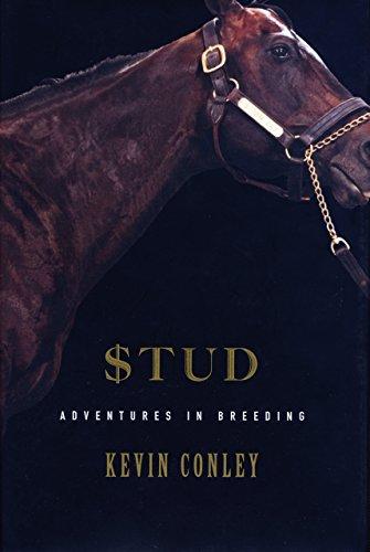 Stud: Adventures in Breeding (English Edition)