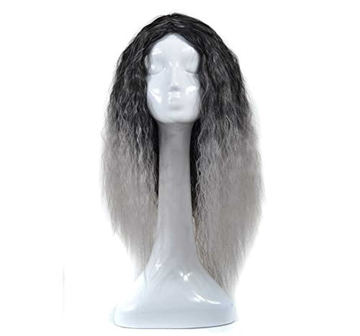 シャー倫理マーカーZXF ブラックライトグラニーグレーのかつらヘッドギア長い巻き毛のかつらアニメフード色トウモロコシのやけど 美しい