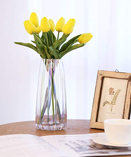 Lewondr Vaso da Fiori, Altazza di 22cm, Vaso in Vetro Vaso di Fiori Design Moderno Elegante Vasi Decorativi Verticale Linea Contenitore Fiori Decorazione per Casa Ufficio Tavola - Iridescente