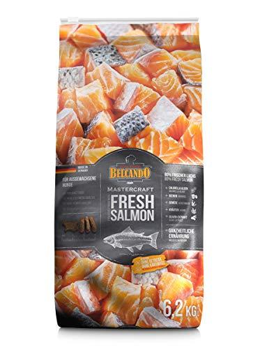 Belcando Mastercraft Fresh Salmon [6,2kg] Trockenfutter für Hunde | 80% Frischfleisch | Hundefutter getreidefrei | sortenrein | für alle Rassen