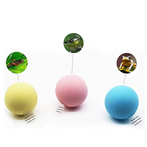 Denique 3 Pack Cat Toy Balls with 3 Lifelike Animal Chirping Sounds FrogCricketBird3 Color PinkYellowBlue Catnip ToyCat Toy Interactive Touch to Make a SoundKicker Toy Best for Indoor Cats