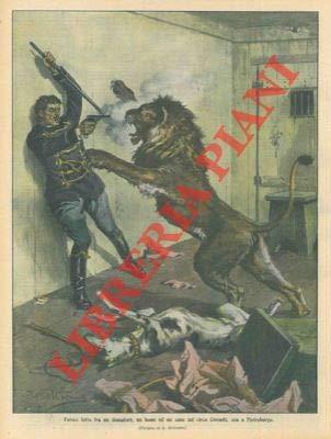 Feroce lotta fra un domatore, un leone ed un cane.