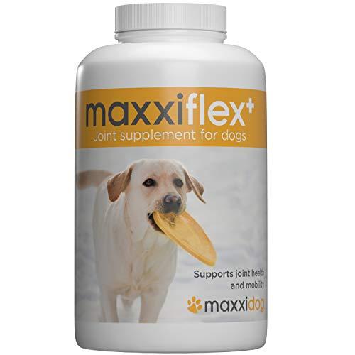 maxxiflex+ Gelenktabletten für Hunde – Teufelskralle, MSM, Glucosamin, Hyaluronsäure, Chondroitin, Bromelain, Kurkuma – 120 Stück