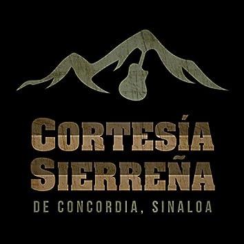 En Vivo Desde Concordia Sinaloa