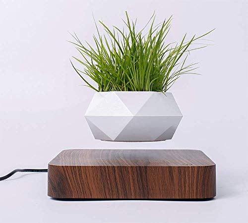 Whspndu Magnetic Levitation Air Bonsai Pot, Mini Sky-Garden Rotating Flowerpot Planter, for Home and Office Decor or Gift (Dark Wood)