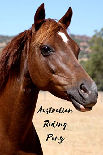 Australian Riding Pony: Journal and Notebook - Composition Size (6'x9') With 120 Lined Pages, Perfect for Journal, Doodling, Sketching and Notes