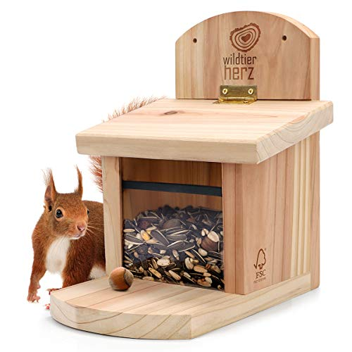 wildtier herz | Eichhörnchen Futterhaus aus verschraubtem Massiv-Holz, wetterfest, Futterstation zum Eichhörnchen füttern, Eichhörnchenfutterhaus
