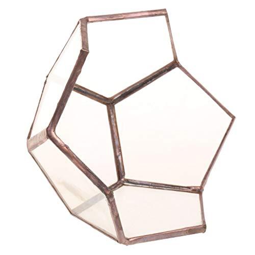 GPWDSN Geometrisches Terrarium, offenes Glas, für Sukkulenten, Heimdekoration