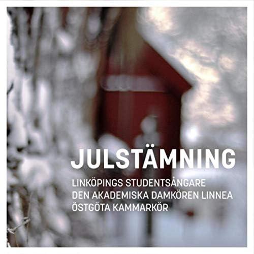 Den Akademiska Damkören Linnea, Östgöta Kammarkör & Linköpings Studentsångare