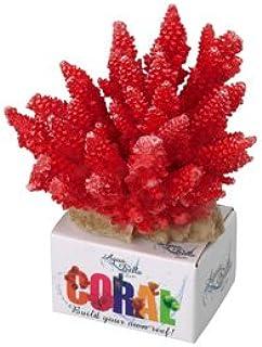 Amazon.es: Incluir no disponibles - Adornos de coral / Decoración ...