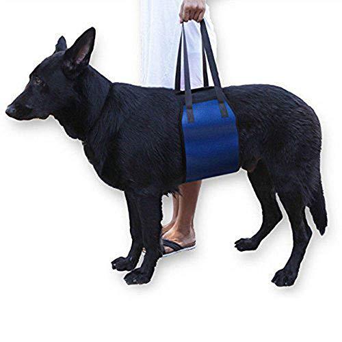 Cinturón Auxiliar Especial Para Perros Ancianos Heridos-Azul Arnes Perro Displasia Silla De Ruedas Para Perros Arnes De Pecho Perro Carrito Perro Arnes Para Perros Arnes Perro Arnes Perro Displasia