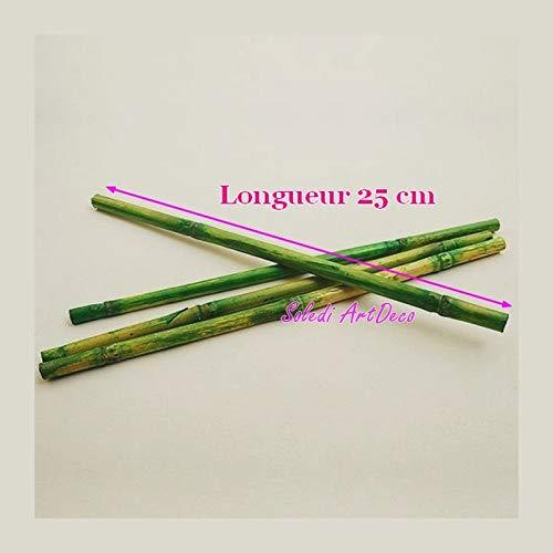 HOBI Lot de 12 Longues Tiges de Bambou Vert décoratif, Long. env. 25 cm, diam. env. 1cm