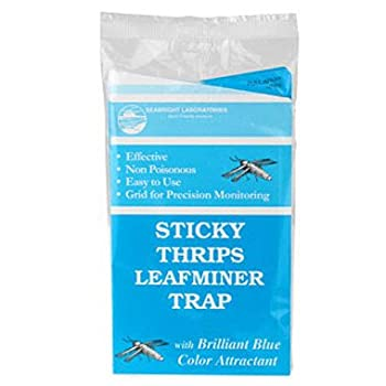 Blue Sticky Trap Thrips Leafminer Trap 15 Pack