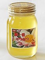 石井栄蜂のハチミツ 春一番600g (倉敷産)
