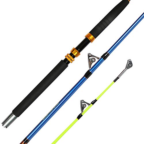 Fiblink Saltwater Offshore Heavy 2-Piece Conventional Boat Fishing Rod(50-80lb, 6-Feet)