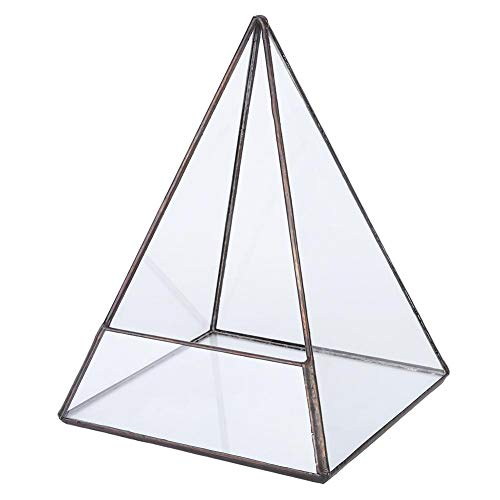 Geometrisch glazen terrarium, tafelblad glazen plantenbak 7,5 inch hoogte Indoor desktop display Air Plant terrarium box voor decoratie, kandelaar (geen planten)